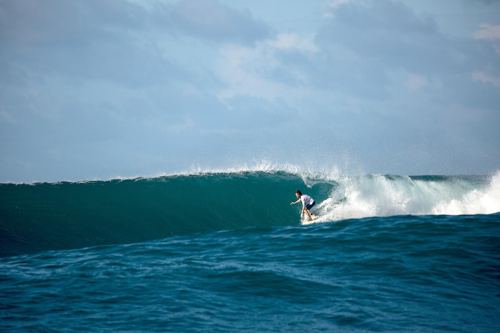 Surfshop à Léon